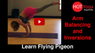 Learn Flying Pigeon
