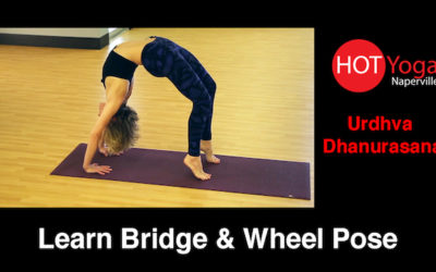 Learn Bridge and Wheel