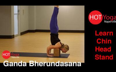 Learn Chin Head Stand | Ganda Bherundasana Pose